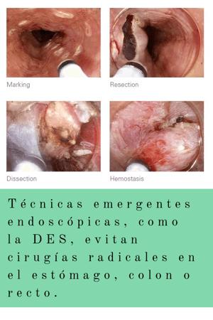 imágenes blog simmedica (2)
